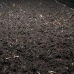 خاک پوششی